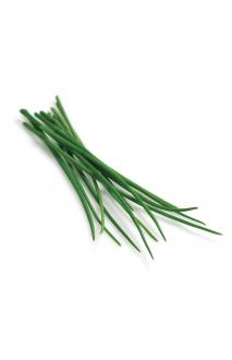 Refill pack Chives